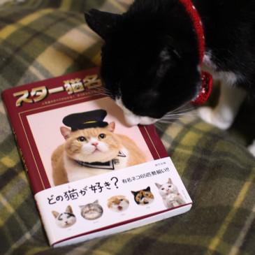 じいにゃん、『スター猫名鑑』に!!!